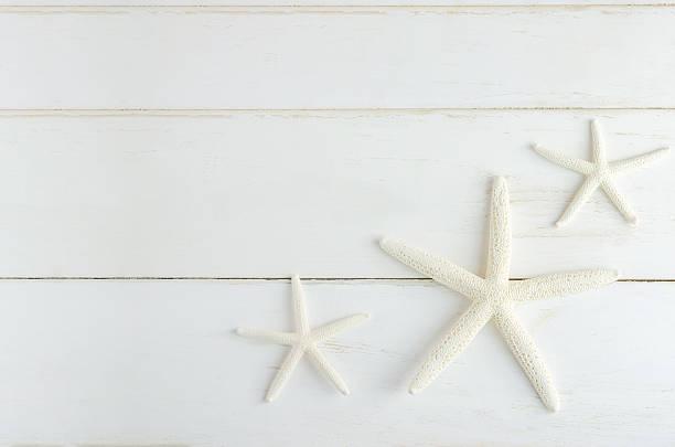 Starfishs stock photo