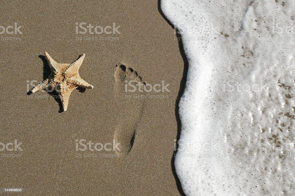Starfoot stock photo