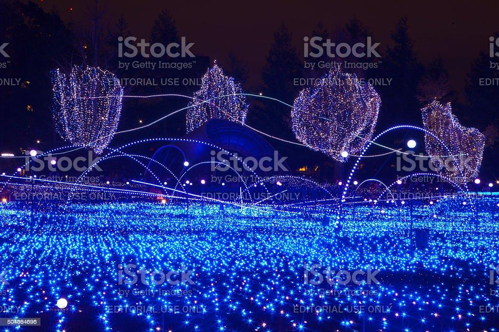 Starlight Garden 2013 Tokyo Midtown stock photo