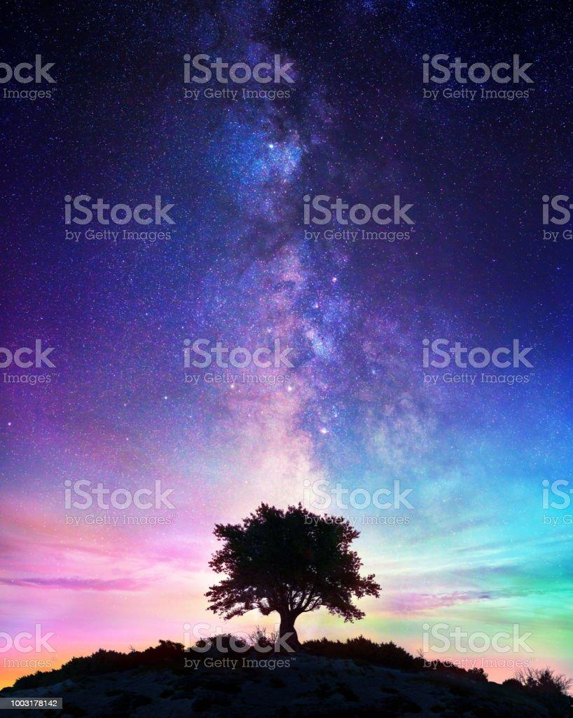 Nuit étoilée - Lonely Tree avec la voie lactée - Photo