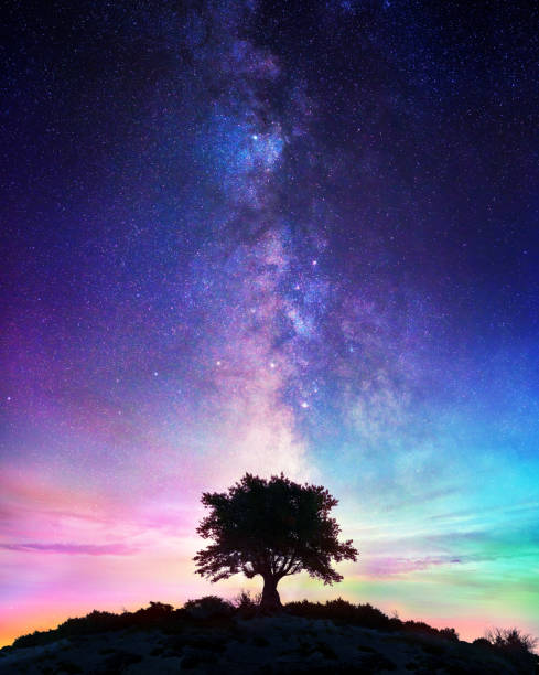 Starry Night  - Lonely Tree With Milky Way Starry Night  - Lonely Tree With Milky Way fantasy stock pictures, royalty-free photos & images