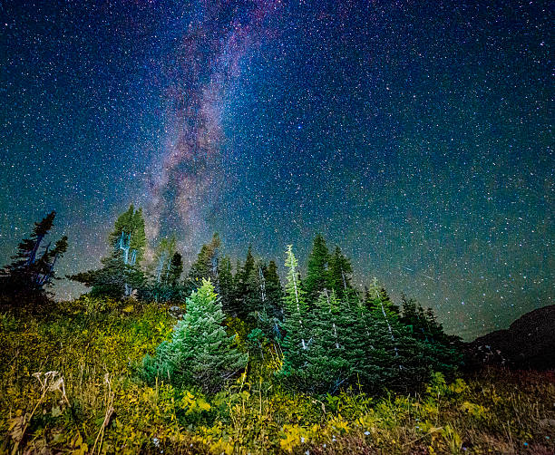 starry night view glacier national park montana logan pass - logan pass stock pictures, royalty-free photos & images