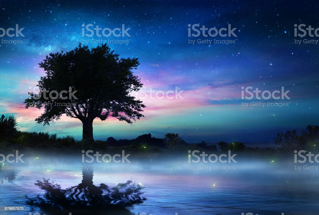 Starry Night With Lonely Tree stock photo