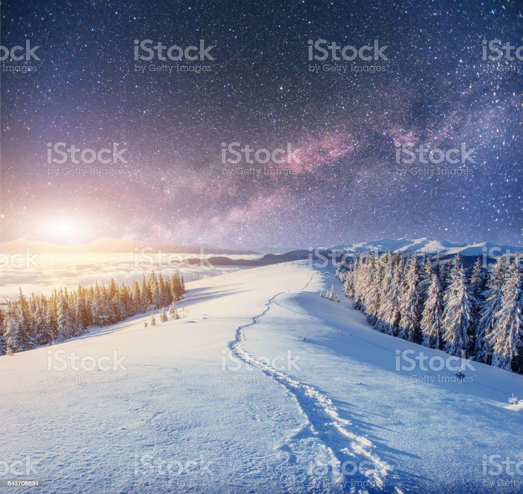 starry sky in winter snowy night. fantastic milky way – Foto