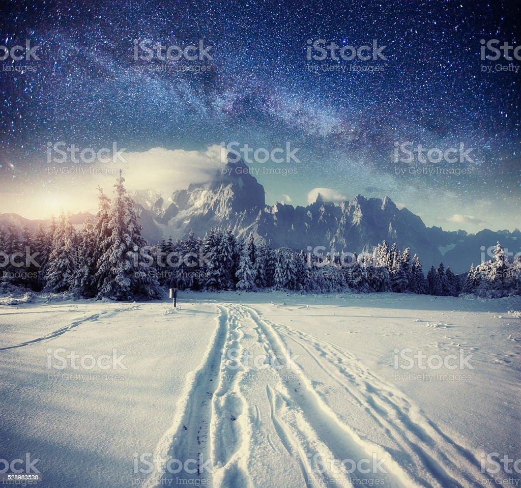 starry sky in winter snowy night. stock photo