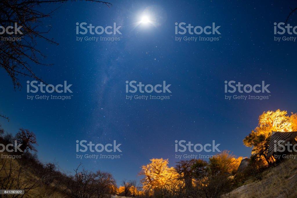 Sternenhimmel, Milchstraße Bogen und Mond, aufgenommen aus der Kalahari-Wüste in Botswana, Afrika. Mondlicht Beleuchtung der Landschaft und Baobab-Bäume. – Foto