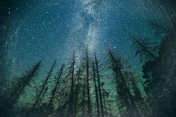 ciel étoilé - astronomie photos et images de collection