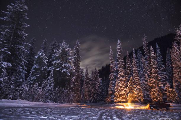 Stars over Snowy Trees stock photo