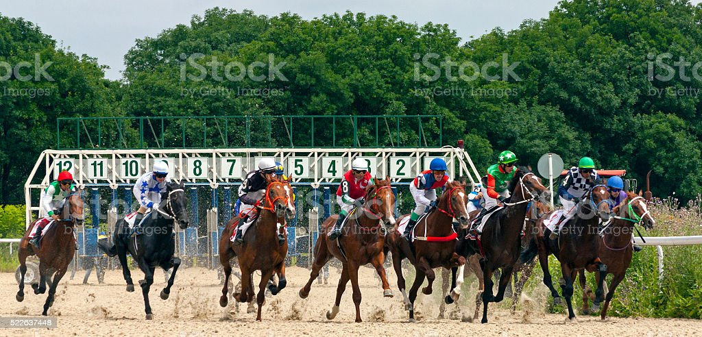 Start horse racing in Pyatigorsk. stock photo
