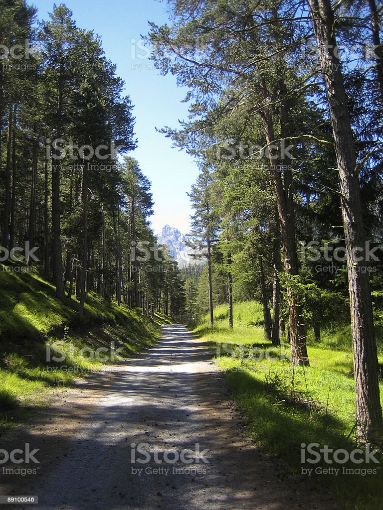 Start of the hike royalty-free stock photo