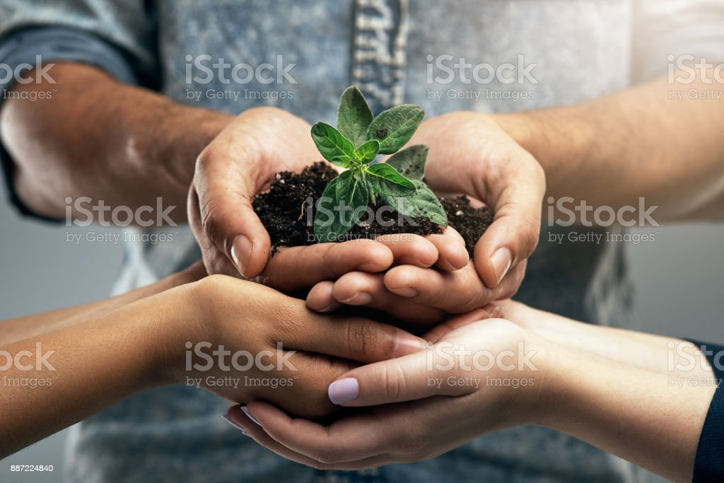 Start small, and you'll eventually grow tall stock photo