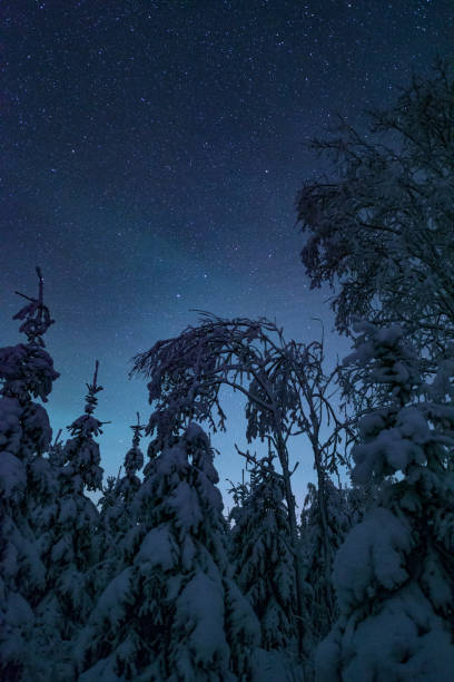 Start winter night stock photo
