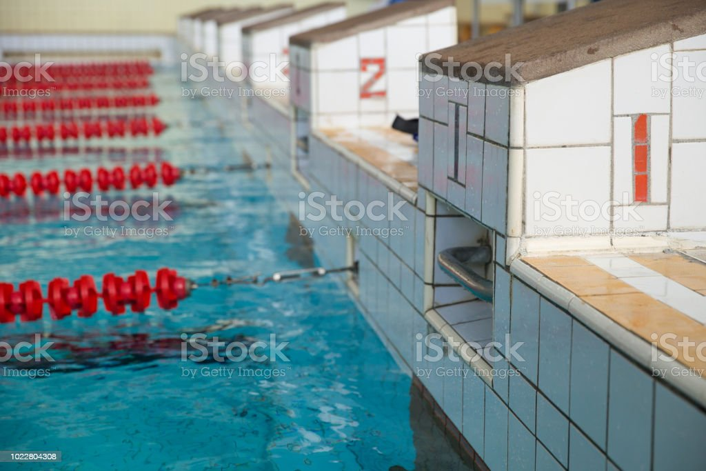 Starting Blocks And Lanes In A Swimming Pool Edge Of Indoors ...