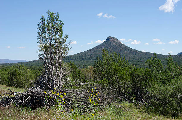 Starvation Peak on the Santa Fe Trail Starvation Peak, also known as Bernal Hill, got its nickname from a legend that states early settlers were chased up the peak by local Indians, surrounded and kept at bay until they died from starvation.  It is a prominent landmark along the Santa Fe Trail, marking the southern-most point of the journey. aisne stock pictures, royalty-free photos & images