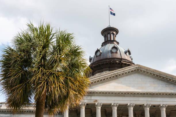 state capitol building - palmwedel stock-fotos und bilder