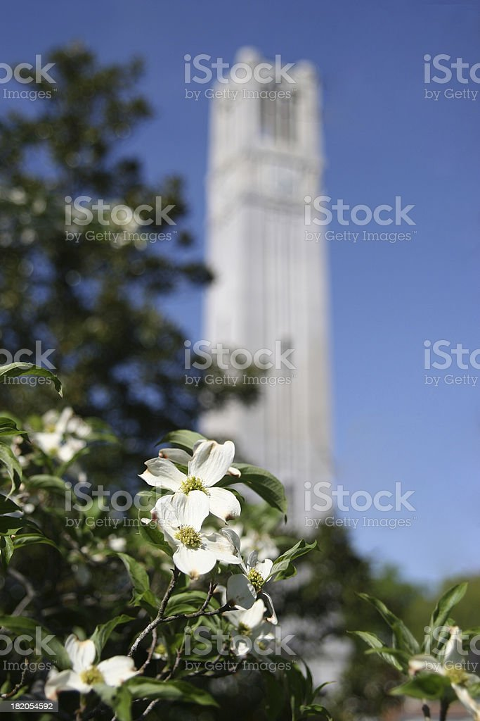 NC State University bell tower 02 stock photo