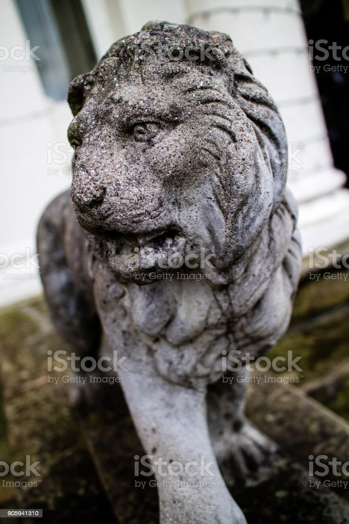 A statue of a Lion in the United Kingdom stock photo