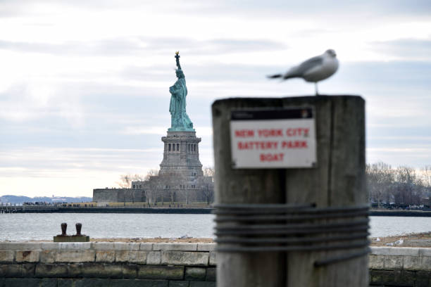 Statue of Liberty Vogel stock photo