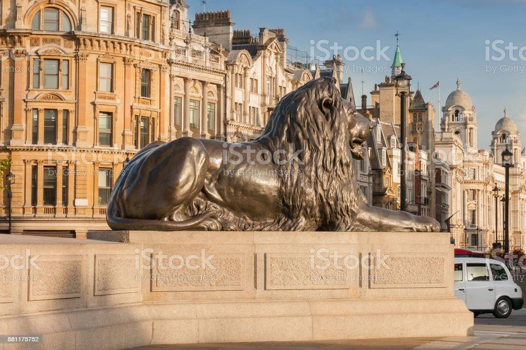 Statue of Lion in gold light  on Trafalgar Square stock photo