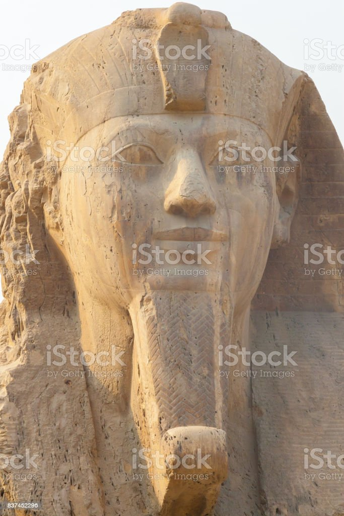 Statue of Ramesses stock photo