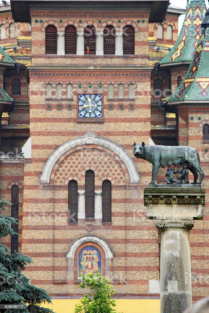 statue with wolf symbol of Timisoara Romania stock photo