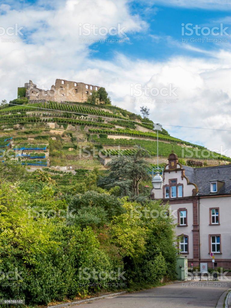 Staufen im Breisgau view to the vineyard hills with the castle ruins on top, Germany stock photo