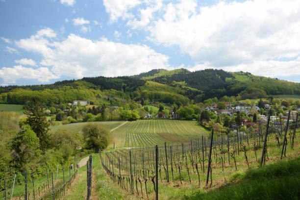 Staufen im Breisgau, Germany – Foto