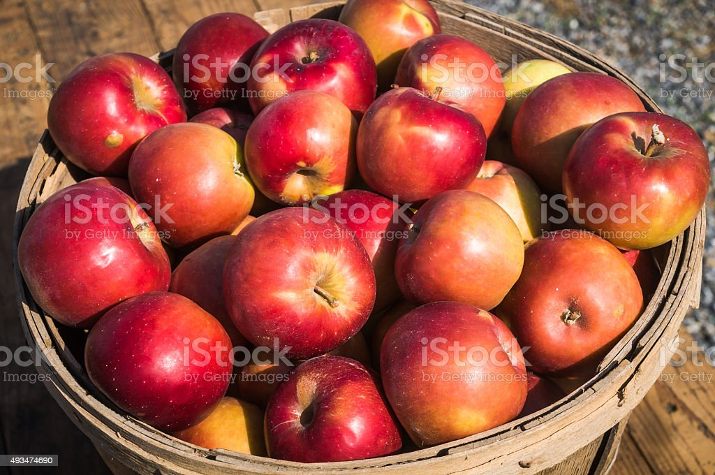 Stayman Winesap Cooking Apples stock photo