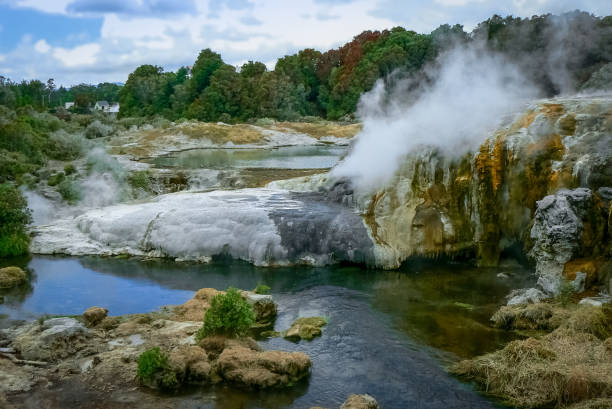 Steam and boiling hot springs at Te Puia geothermal area, Rotorua, New Zealand Hot springs and steaming geysers  at Te Puia geothermal area, Rotorua, North Island, New Zealand rotorua stock pictures, royalty-free photos & images