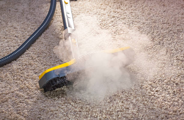 a steam cleaner in action cleaning a carpet - stoom stockfoto's en -beelden