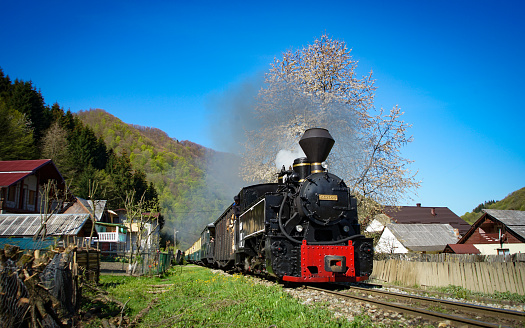 Old steam engine used for timber transport and now more for wood