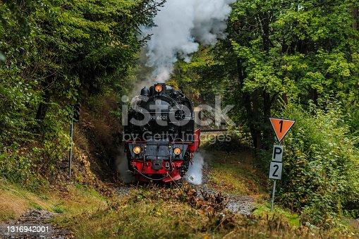 istock Steam locomotive of a narrow-gauge railway in the valley 1316942001