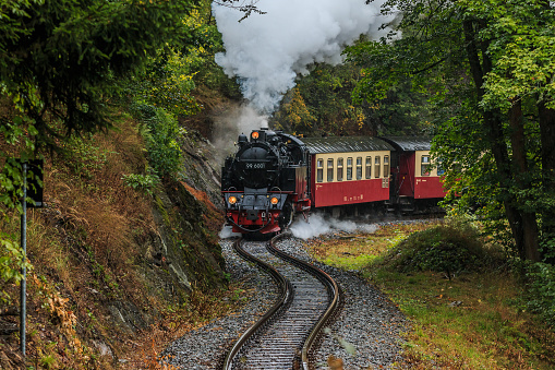 steam locomotive with wagons in the Harz Mountains