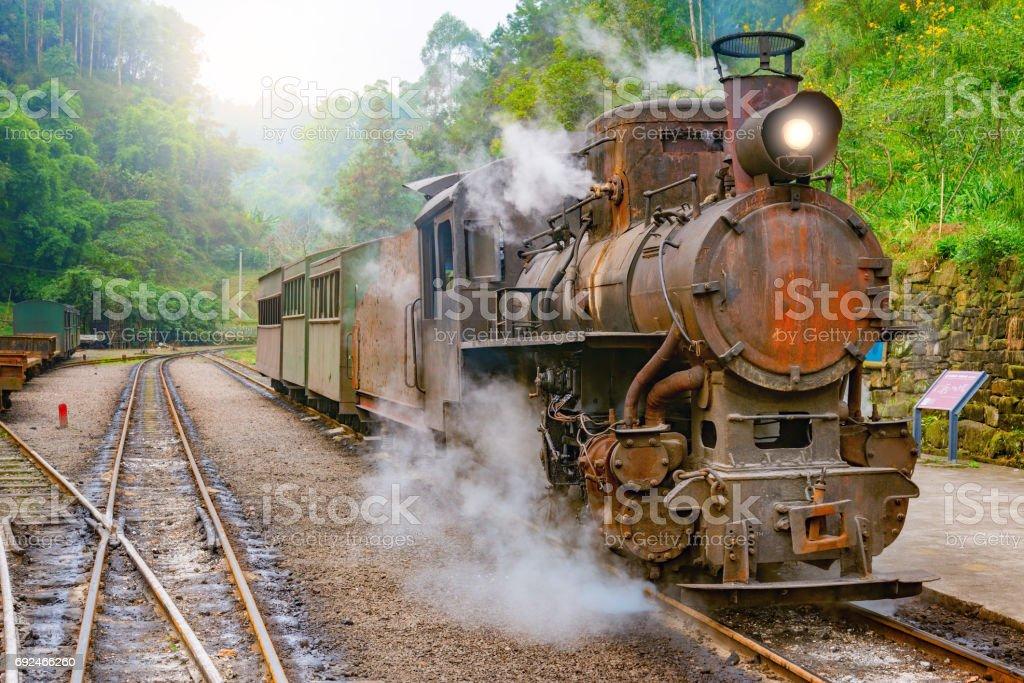 Steam narrow-gauge train. stock photo