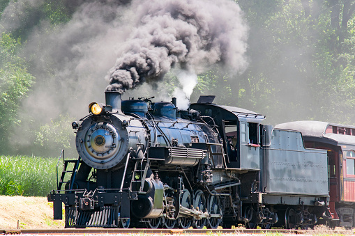 Steam Passenger Train Pulling into Picnic Area Blowing Smoke on a Sunny Summer Day