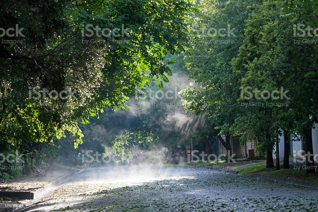 Steam rising on the road stock photo