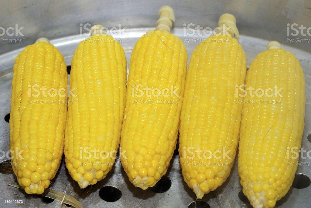 steam sweet corn royalty-free stock photo
