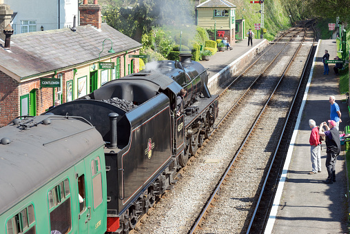 istock Steam train at Medstead railway station 666783052