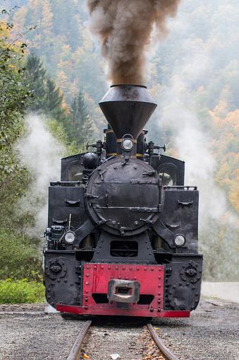 The Reșița Engine used for the Mocanița touristic narrow line in Vișeul de Sus, Romania.
