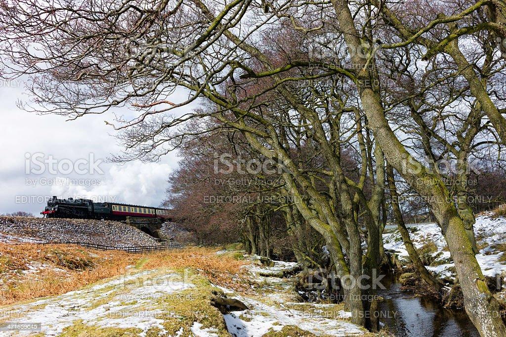 Steam train, North York Moors, Goathland, Yorkshire, UK royalty-free stock photo
