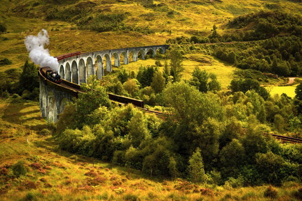Steam train on viaduct Jacobite steam train on old viaduct in Glenfinnan, Scotland railway bridge stock pictures, royalty-free photos & images