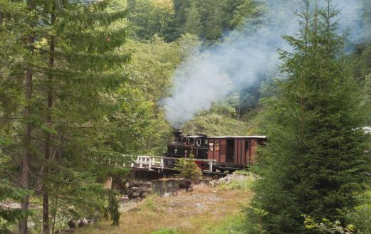 Steam train on forest railway on Vaser valley, Romania.
