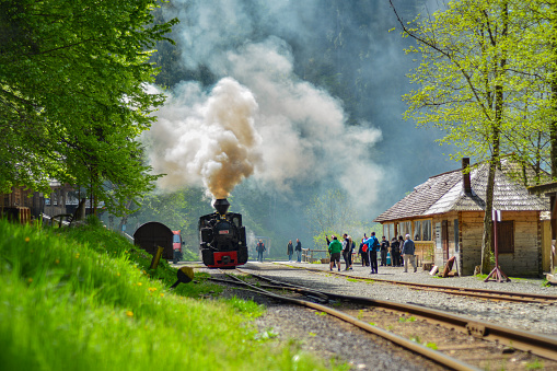 Forestry railway Mocanita Maramures from North Romania, used for timber and tourists transport, departure from station.