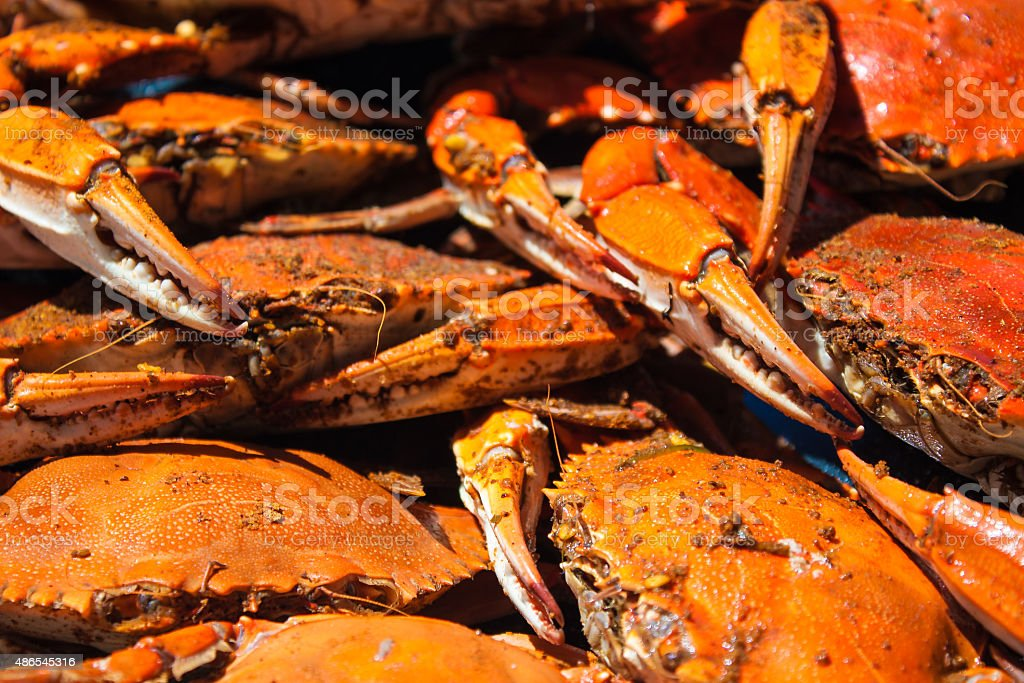 Steamed blue crabs from the Chesapeake bay stock photo