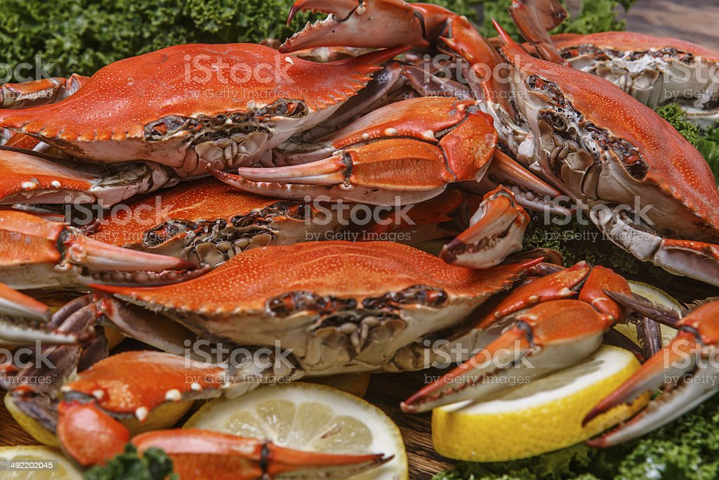 Steamed Blue Crabs on a wooden table stock photo