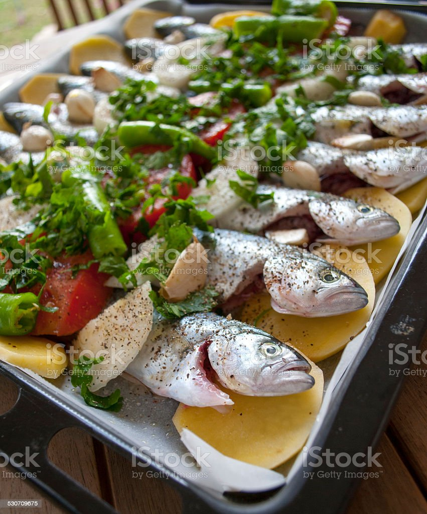 Steamed Bluefish stock photo