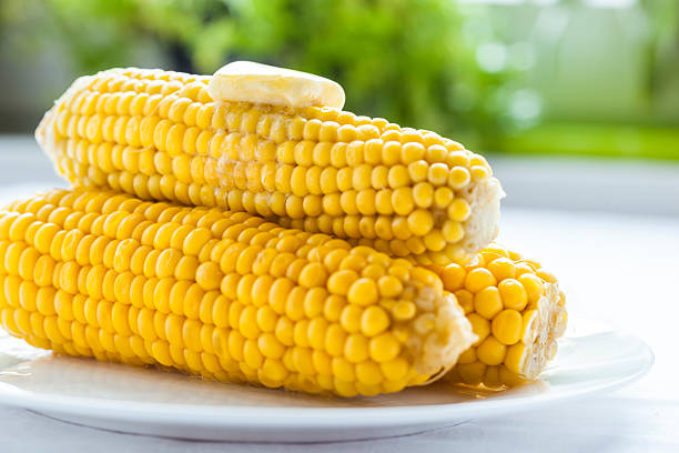 Steamed Corn stock photo