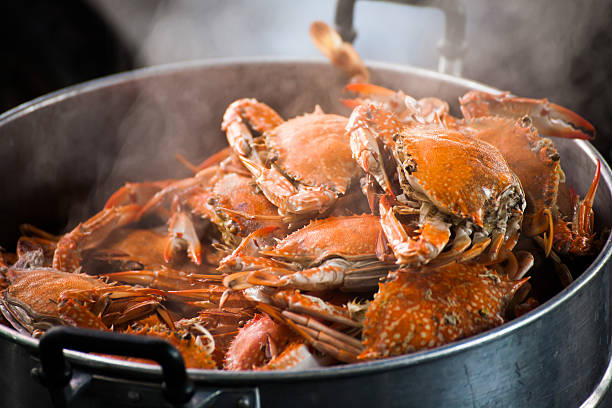 steamed crab - gestoomd stockfoto's en -beelden