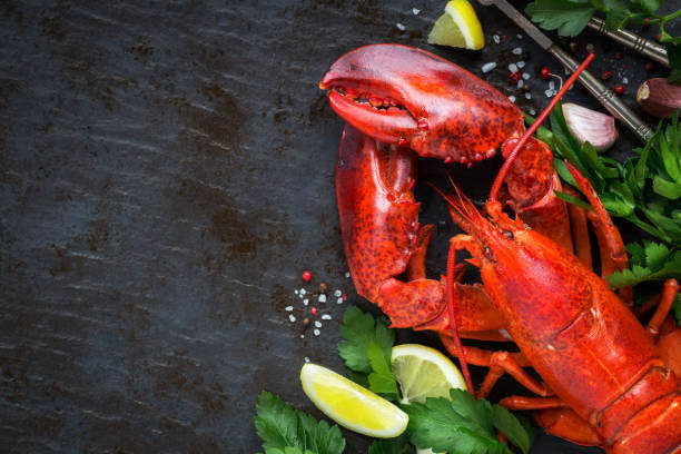Steamed lobster on black background with copy space stock photo
