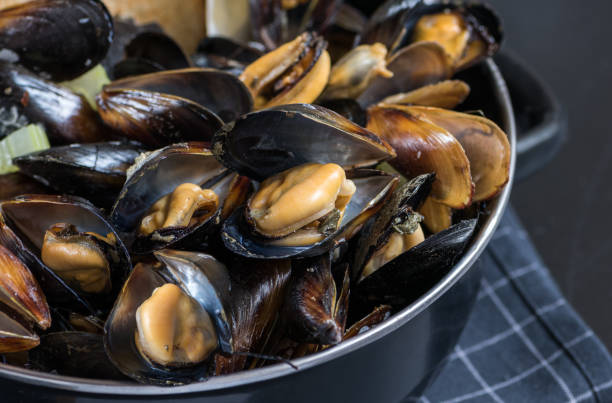 Steamed mussels in white wine sauce Steamed mussels in white wine sauce in a black pot. mussel stock pictures, royalty-free photos & images